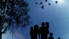 Заставка для - На «Территории семьи»