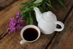 Иван-чай (1)