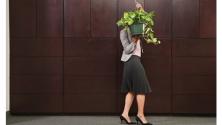 Заставка для - Четыре проблемы, которые мешают радоваться зарплате